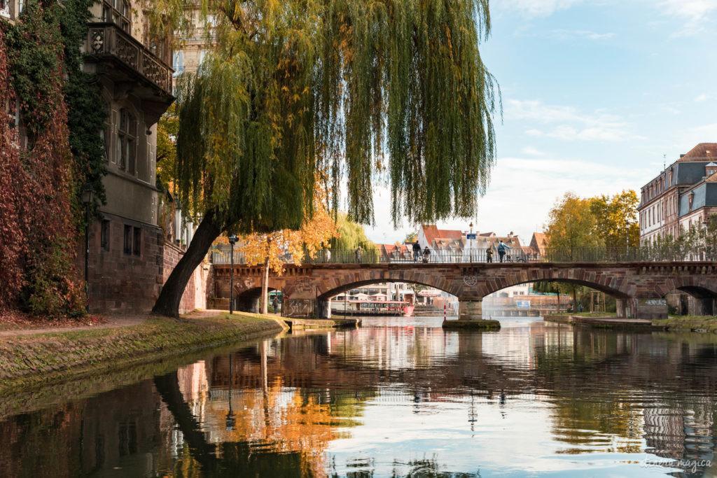 Que voir en Alsace à l'automne ?
