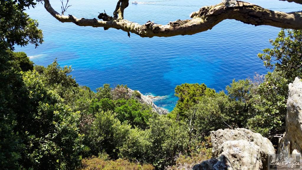 Port-Cros, côte d'azur, plage, voyage, paradis, calanque, mer
