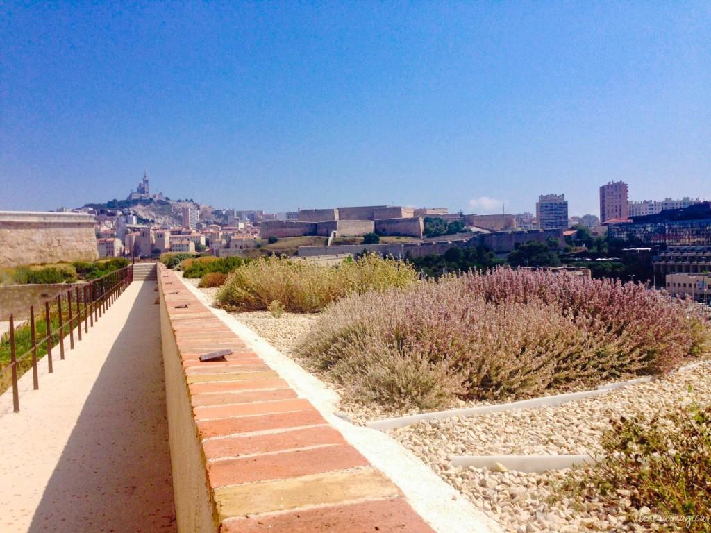 Marseille, MUCEM, vieux port, fort Saint Jean, fleurs