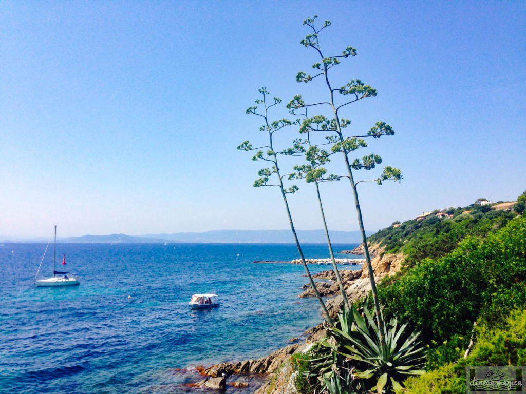Le Levant, îles d'Or, Méditerranée