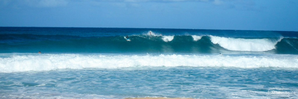 Surfers on the Northshore.