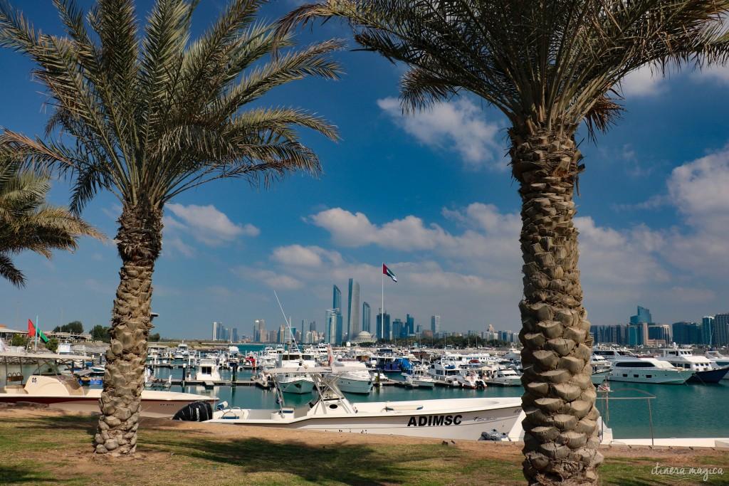 Entre deux palmiers, la marina d'Abu Dhabi, et la skyline en arrière plan.