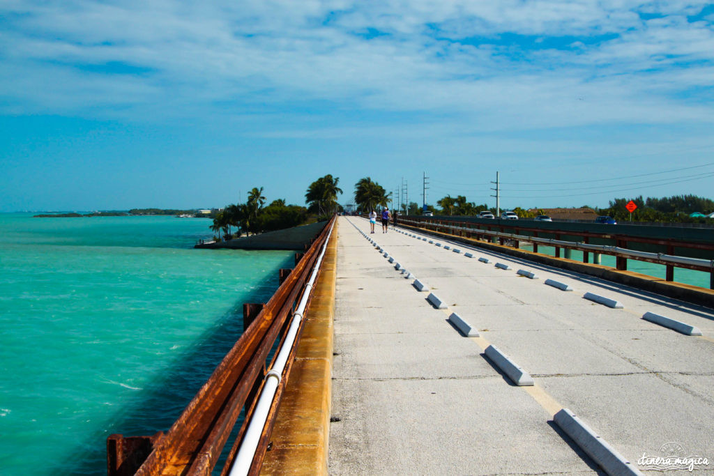 Key West, paradis tropical, jardin enchanté, est aussi le lieu de fête privilégié de la communauté LGBT. Venez bronzer sous l'arc-en-ciel !