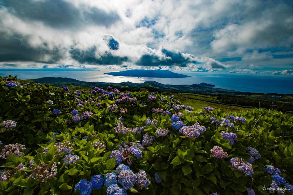 Que faire aux Açores ? Quelle île choisir aux Açores ? Faial