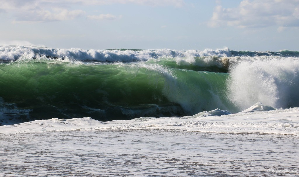 This Hossegor shorebreak isn't big enough to produce hissing or howling... but it's still lovely to watch.