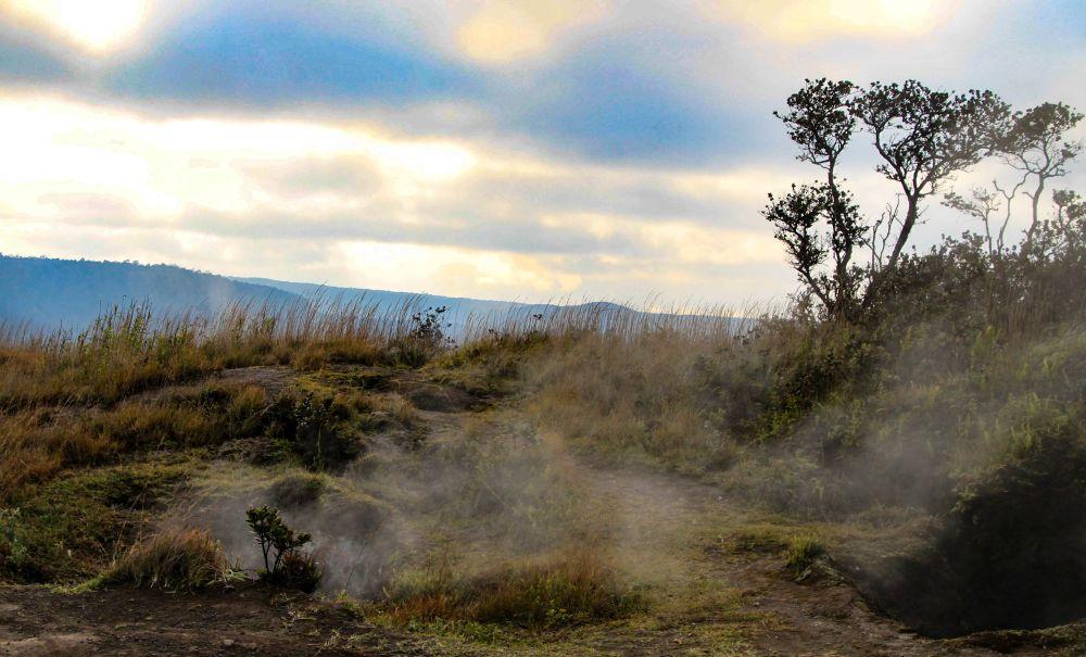 Fumerolles volcaniques qui s'échappent du sol - sur la grande île, partout la Terre respire, partout la chaleur et le souffre m'enveloppent.