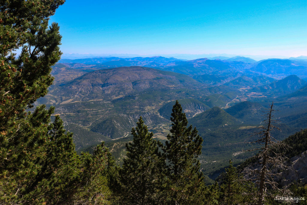 Le Mont Ventoux est le gardien de Provence, royaume du mistral et des pierres blanches. Cerisiers et secrets du Ventoux, itinéraires et voyage en photos.