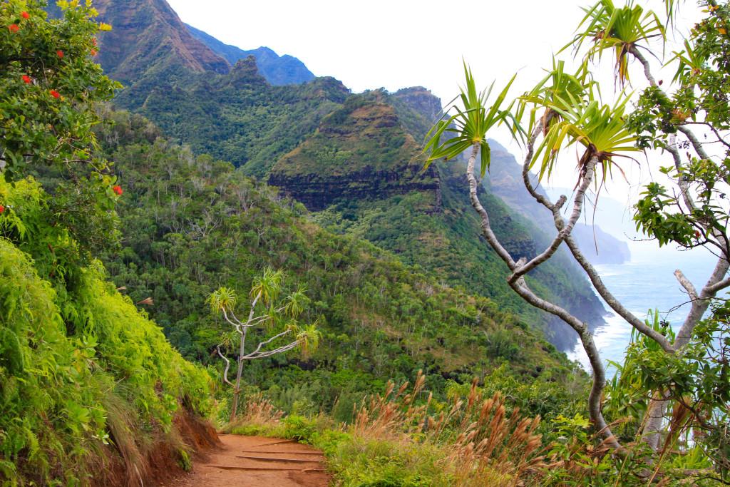 Reliefs découpés de la sublime côte Napali, sur Kauai. C'est ici que la « guerre des lépreux » a fait rage, lorsque les lépreux, menés par le guerrier Koolau, se sont cachés dans les vallées escarpées pour échapper à la déportation sur Molokai. Jack London en a tiré une nouvelle superbe.