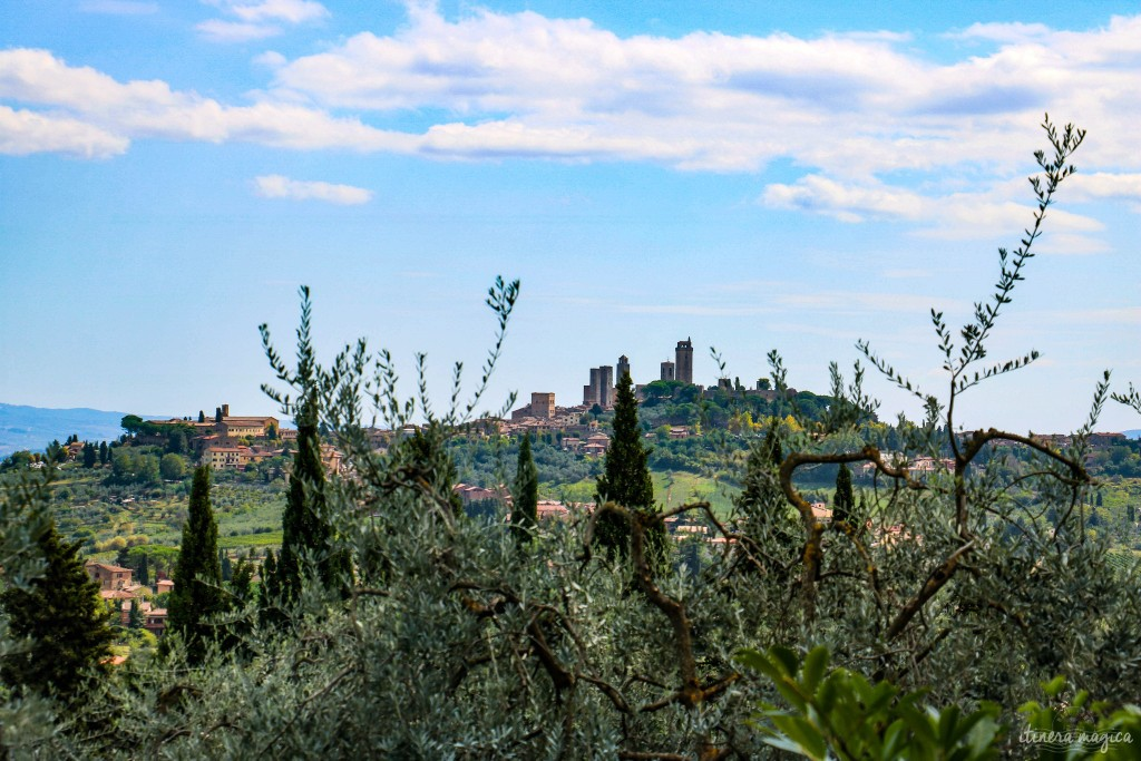 Vue sur les tours de San Gimignano, à travers les cyprès et les oliviers.