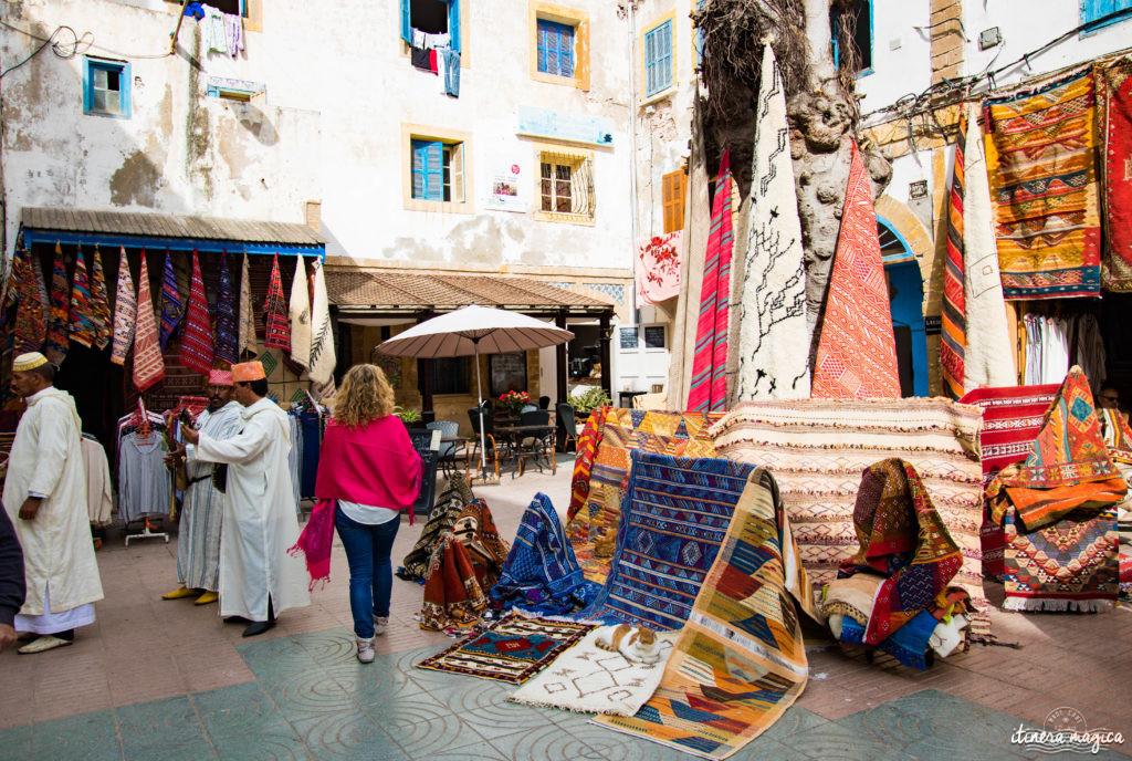 Que voir à Essaouira ? Médina, Mogador, Sqala, chats