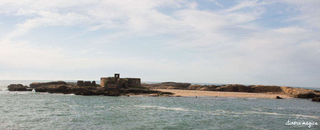 Que voir à Essaouira ? Iles purpuraires, îles de Mogador