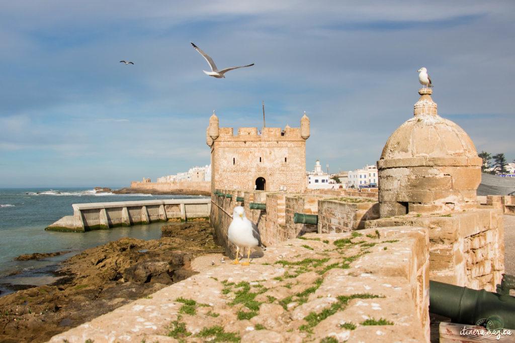Que voir à Essaouira ?
