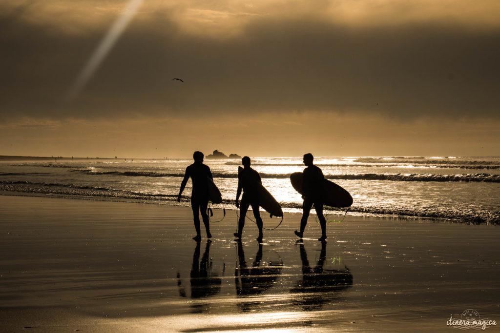 Que voir à Essaouira ? Surfeurs à Essaouira
