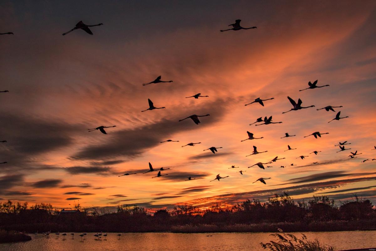 Le plus beau coucher de soleil de france itinera - Lever et coucher du soleil bordeaux ...