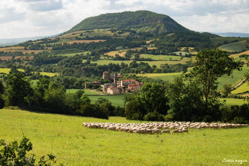 Que voir et que faire en Aveyron ?