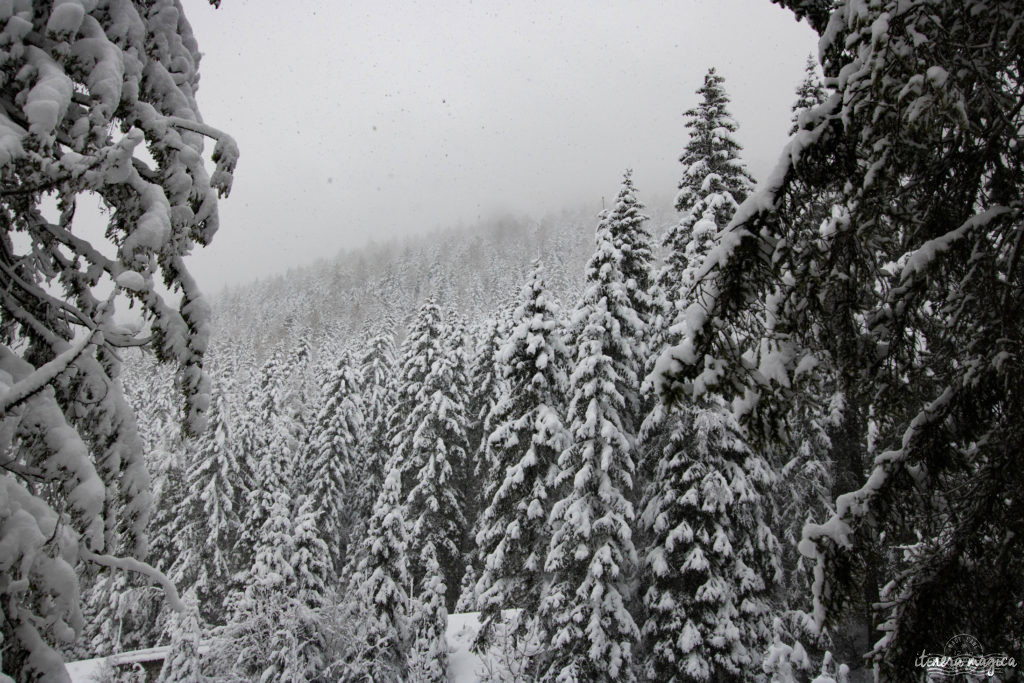 Que faire à Chamonix par mauvais temps ? Que faire à Chamonix ? Plus beaux sites de Chamonix. Aiguille du midi, mer de glace, vallée blanche, les Drus...