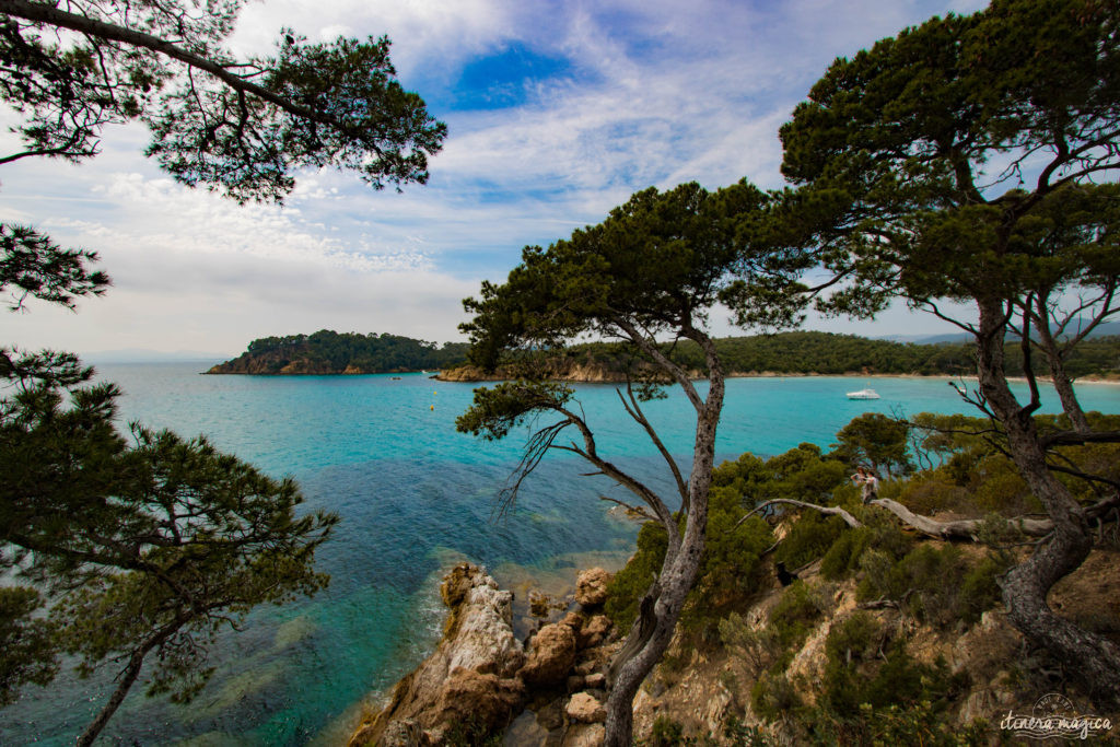 Découvrez le sentier du littoral, la plage de l'Estagnol et le fort de Brégançon sur Itinera Magica : la côte d'Azur dans toute sa splendeur !