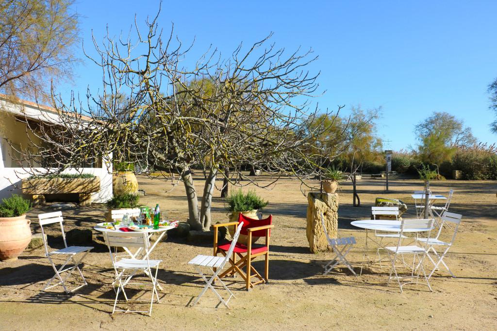 Im Mas Cacharel an einem wunderbaren Novembertag.
