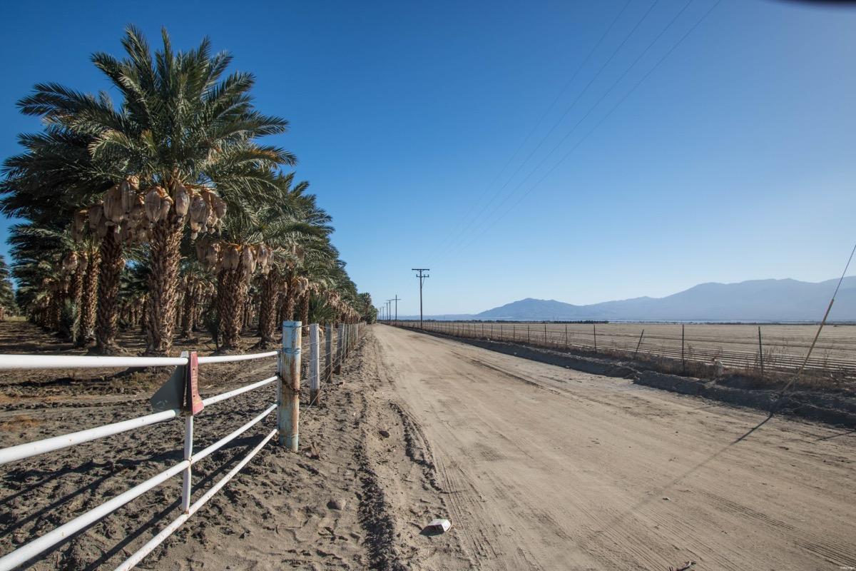 Vallée de Coachella blog