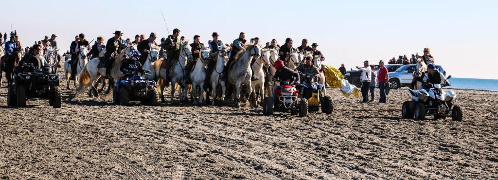 """""""Abrivades"""" - Stierführung am 11. November. Eine gruppe von Reitern umringt einen Bullenherd und soll ihn bis in die Stadt, in einer Entfernung von etwa 6 Kilometern, führen. Was das Spiel noch gefährlicher werden lässt, sind die Quadfahrer, die mit Alufolien wedeln, die Pferde hetzen, und versuchen, die Reiter zum Sturz zu bringen."""