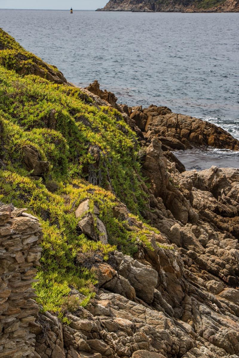 L'île naturiste du Levant