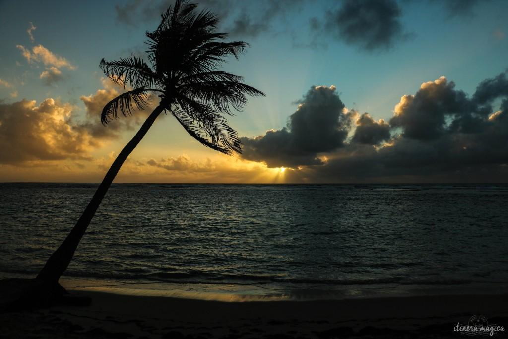 Soleil levant.