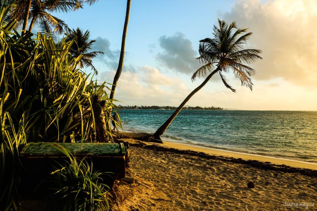 Coffre au trésor abandonné sur une plage, symbole du passé qu'on exhume ?