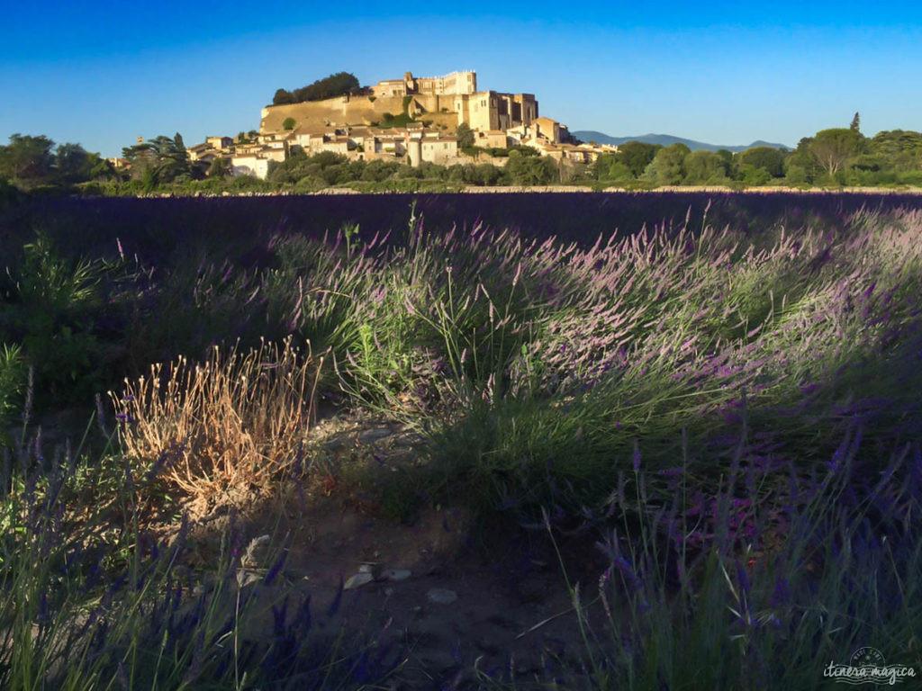 geheimtipps provence grignan lavendel grignan