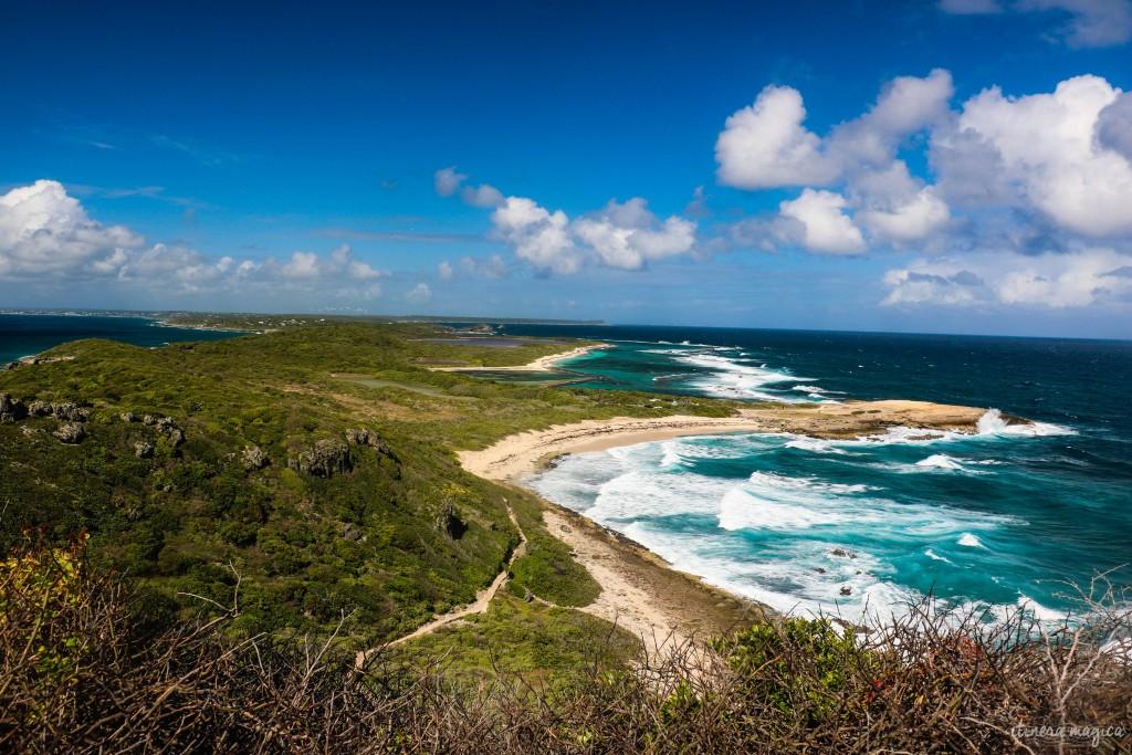 Toute la Guadeloupe semble ouvrir ses ailes sous nos yeux.