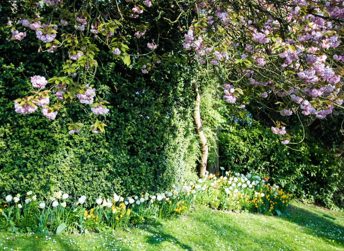 jardin des plantes caen - Itinera Magica