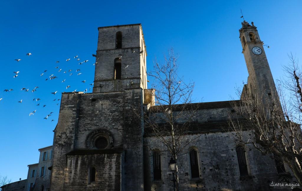 Eglise de Forcalquier dans une tempête d'ailes.