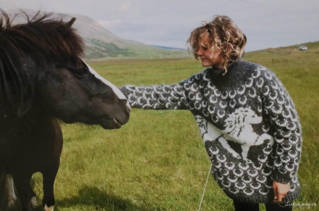 Le pull, le cheval et moi.