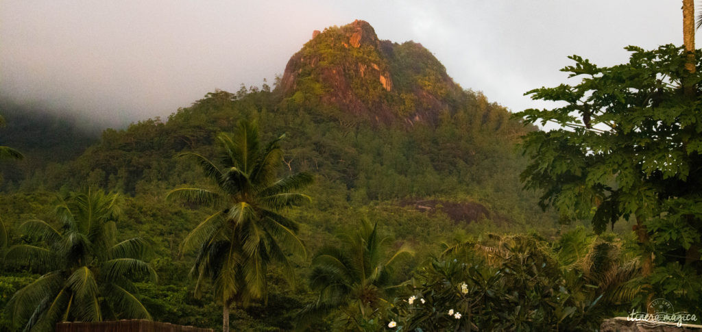 Vous rêvez d'un voyage aux Seychelles ? Je vous livre les clefs du paradis. Itinéraires, excursions, hôtels, astuces, bons plans sur Itinera Magica.