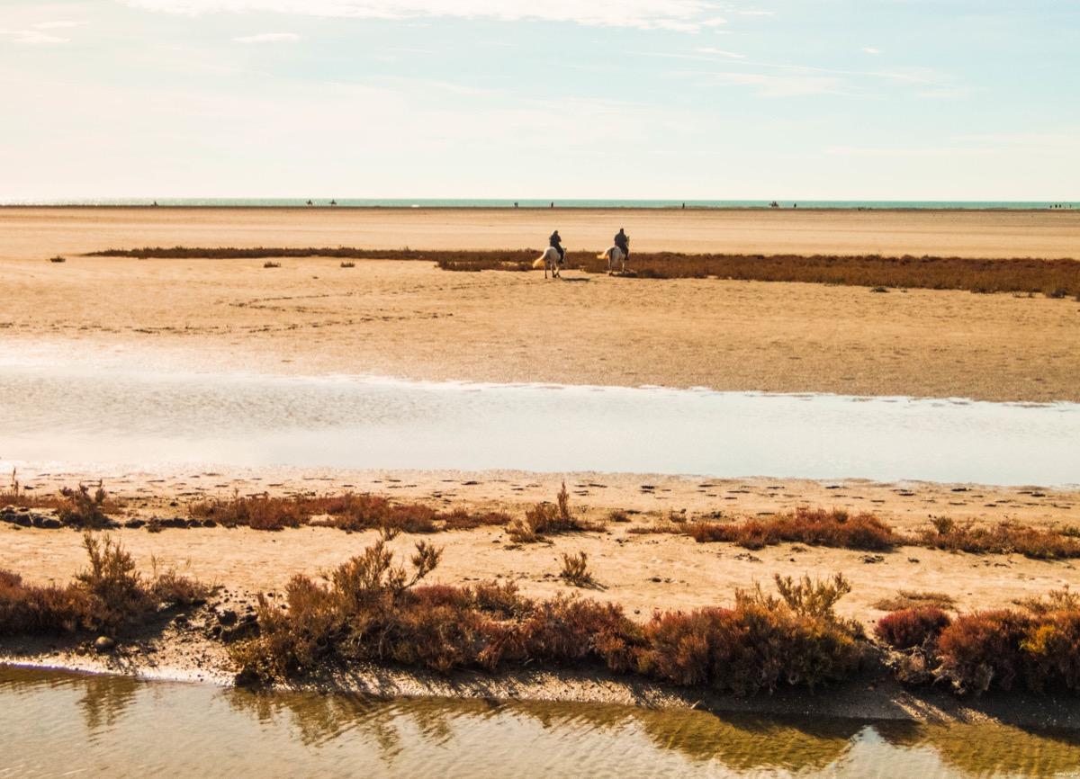 belle plage sauvage camargue
