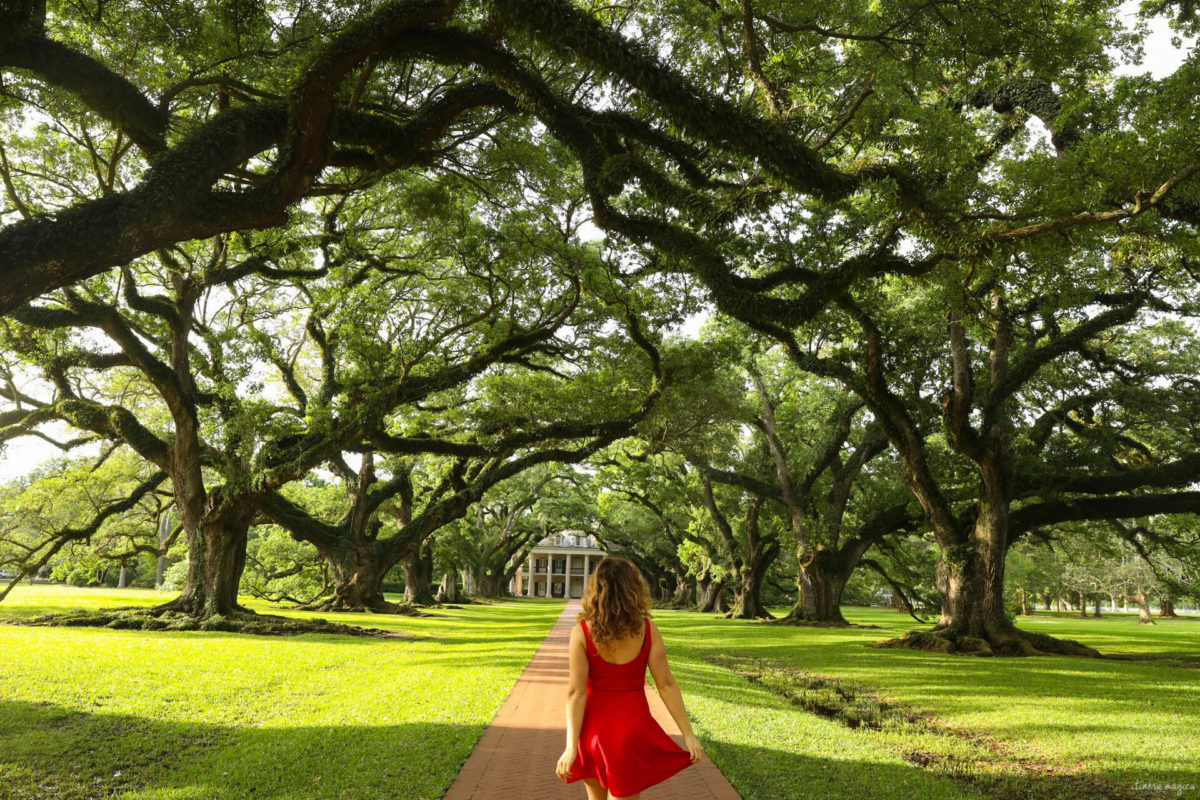 Oak Alley, Louisiane