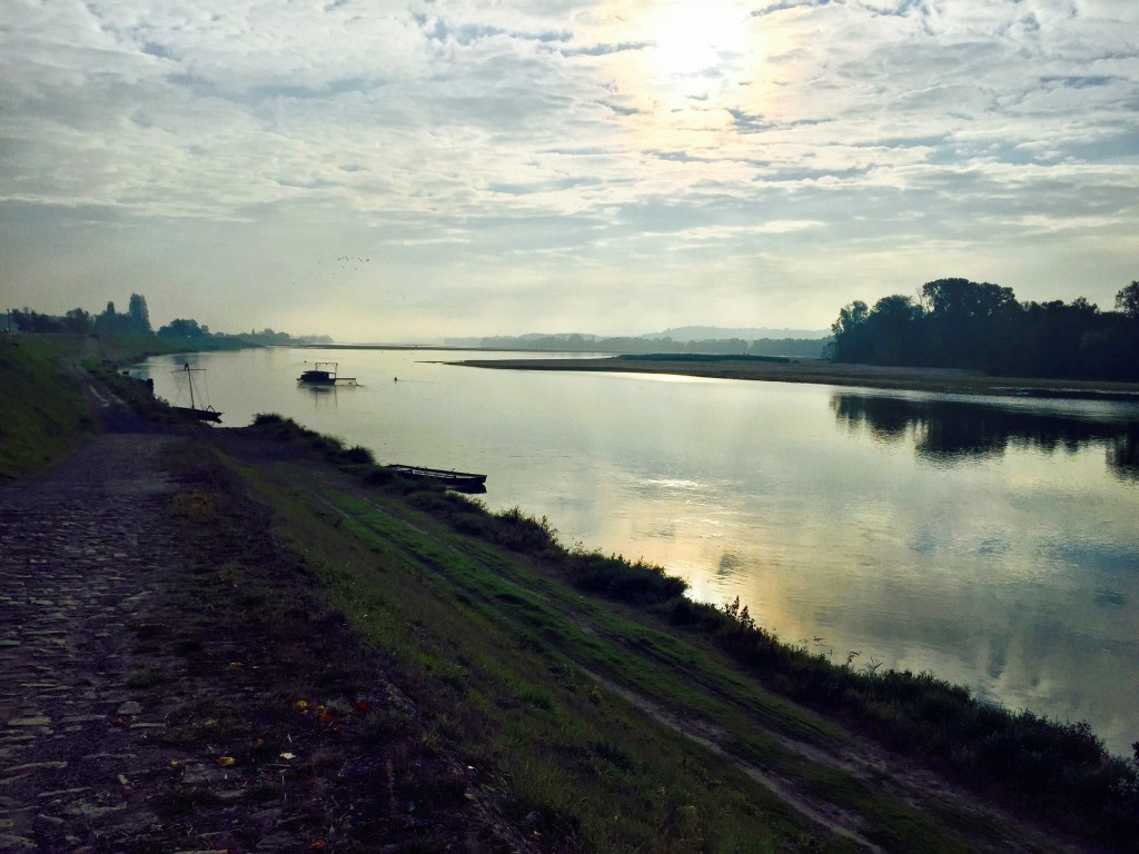 Bords de Loire, entre Angers et Saumur