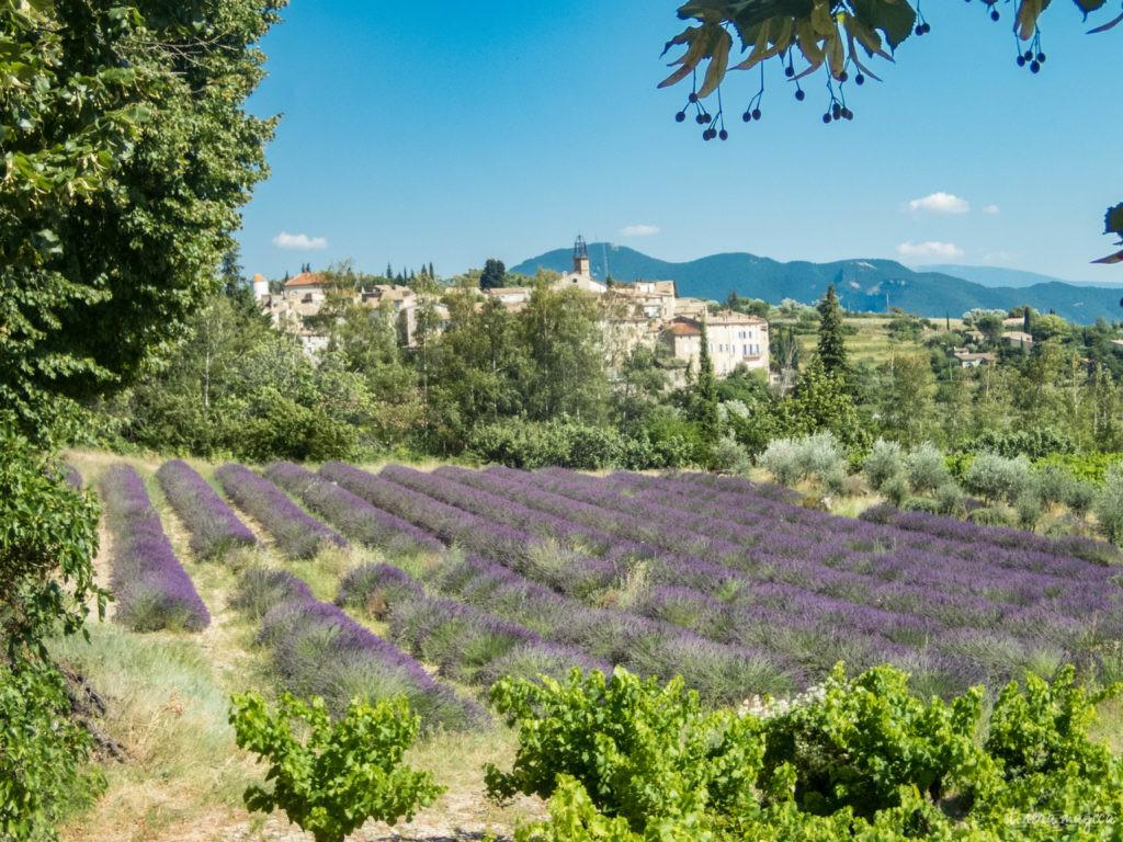Mes plus beaux coins de Provence