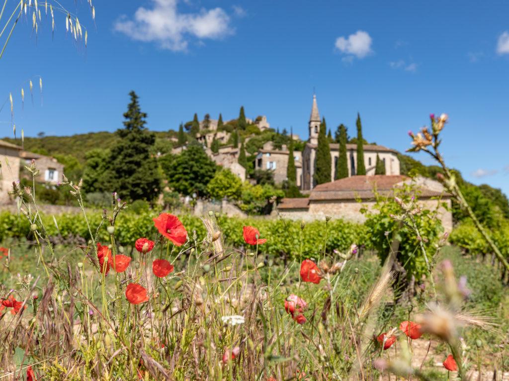 Que faire dans le Gard rhodanien, que faire en Provence occitane ? Découvrir La Roque sur Cèze, les cascades du Sautadet