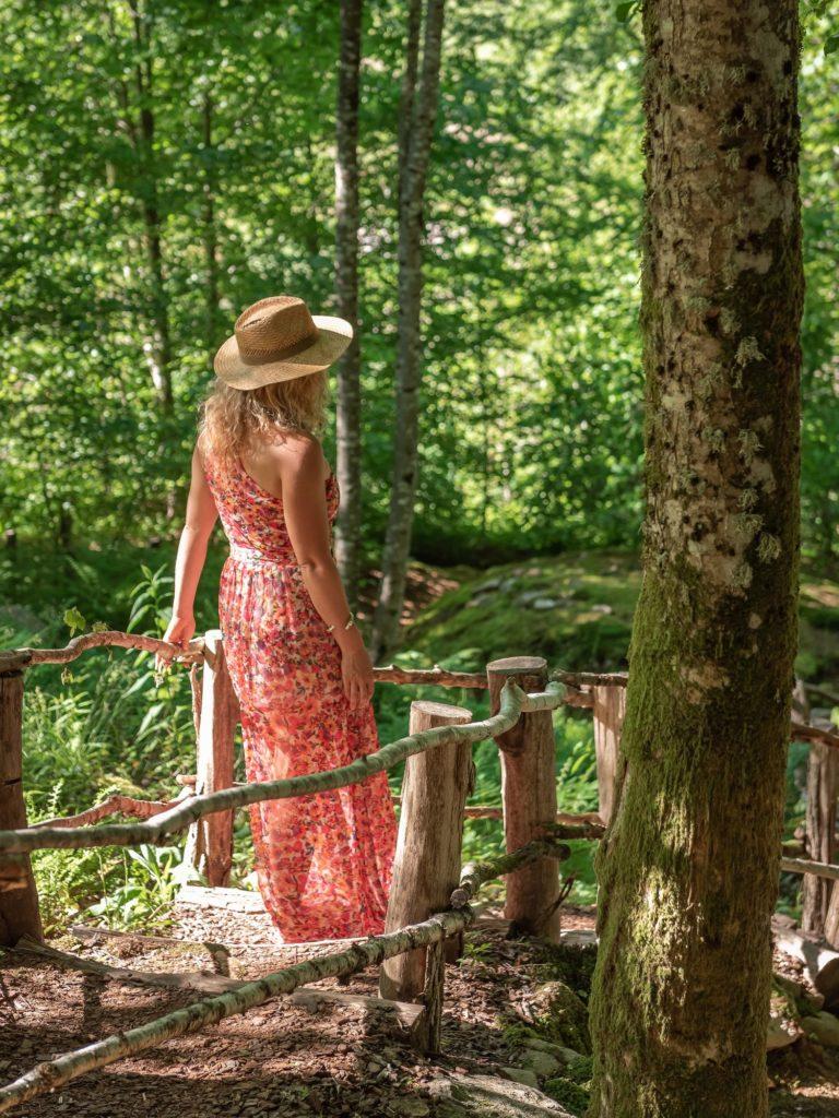 Que faire autour de Gérardmer, dans les Vosges ? Jardin alpin de berchigranges