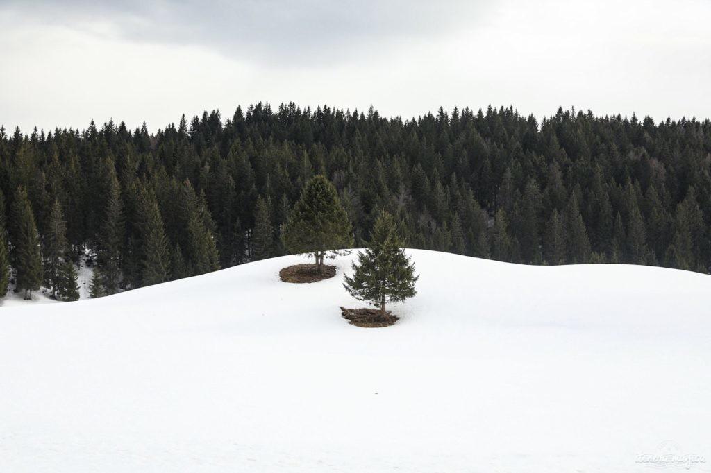 massif du jura en hiver