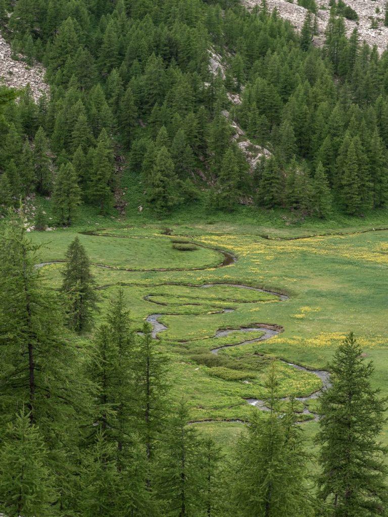 lac d allos alpes de haute provence