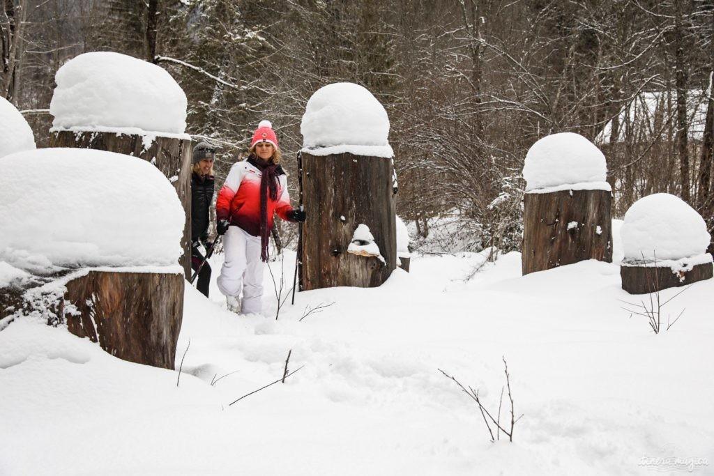 L'hiver dans le massif de la Chartreuse : où dormir ? que faire ? que voir ? Idées d'activités en hiver en Chartreuse, à côté de Grenoble. Marche nordique en Chartreuse