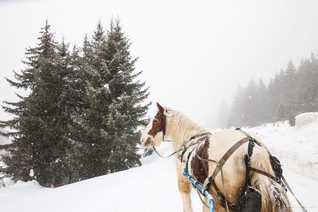 L'hiver à Morzine : ski et bonnes adresses. Que faire à Morzine ? Que voir à Morzine. Morzine ski et outdoor