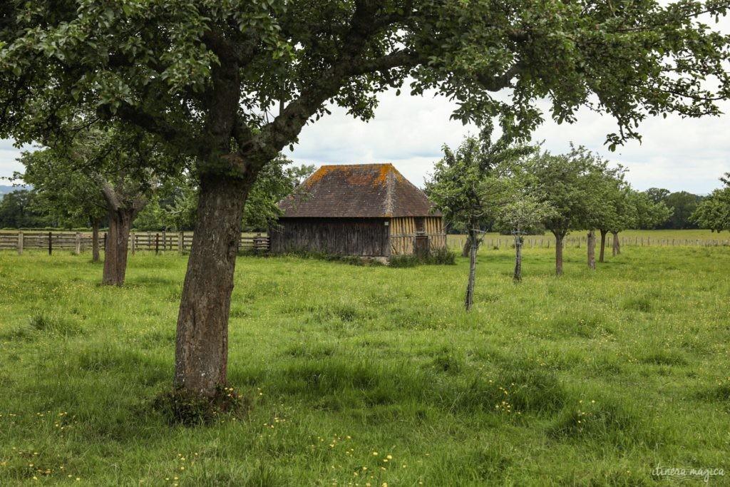 orne week end en normandie que voir dans l'orne (42)