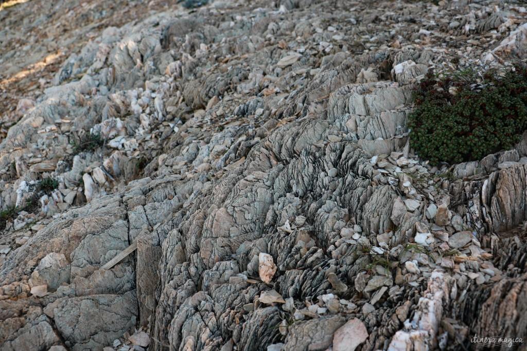 Sédiments sur le sol rocheux de l'île.