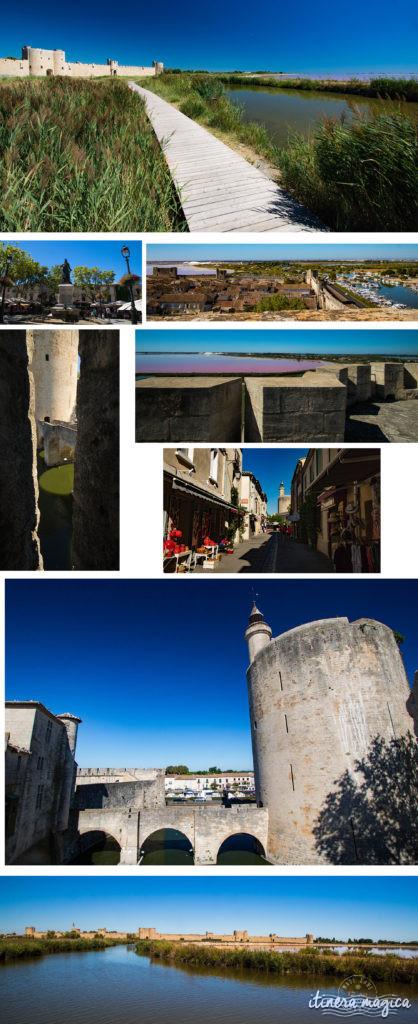 Que faire en Camargue ? Balades à cheval, bonnes adresses, incontournables, retrouvez tout sur le Camargue.