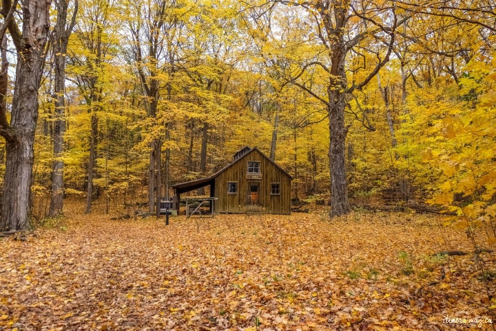 Où voir les couleurs d'automne, en Europe, au Japon, au Québec et ailleurs ? Les plus belles couleurs de l'automne par les blogueurs de voyage, pour des voyages chatoyants. #automne