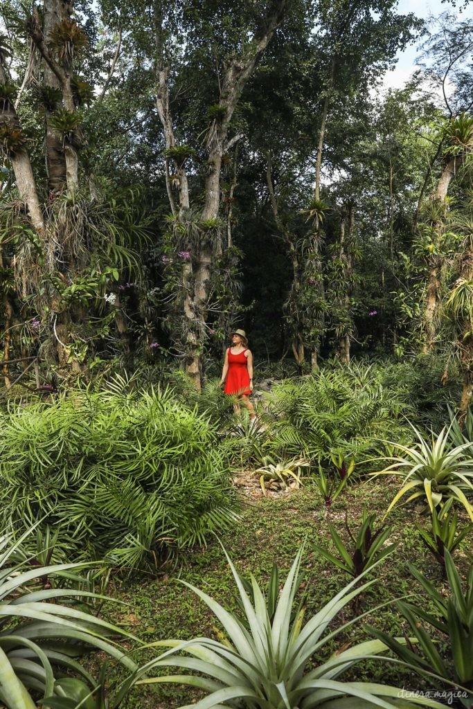 Un road trip en République dominicaine : que voir et que faire en République dominicaine ?