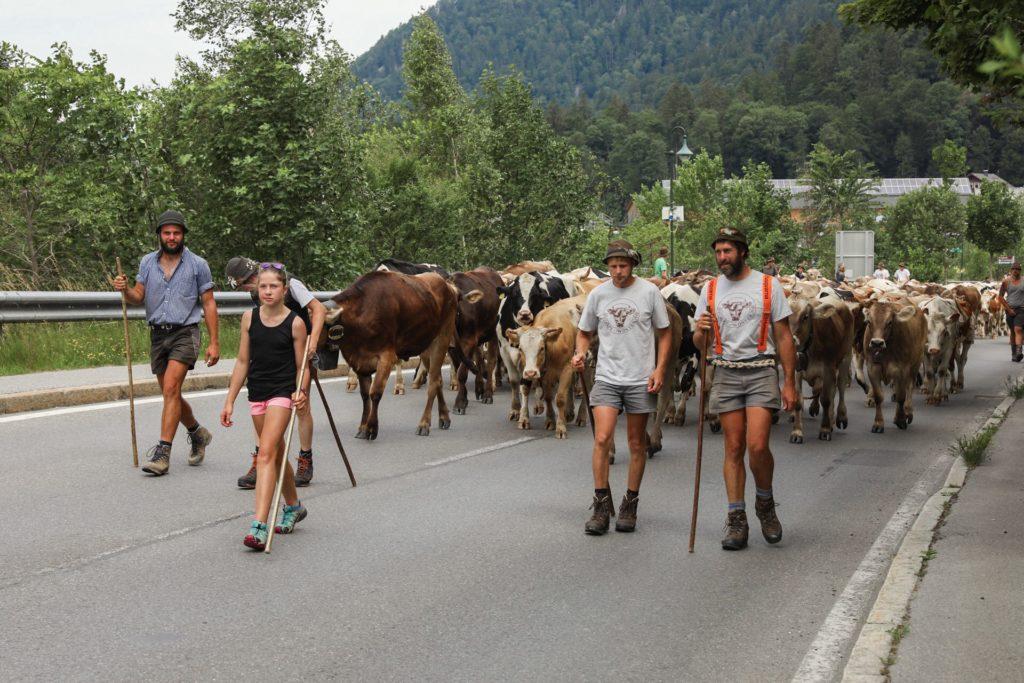 road trip en Autriche