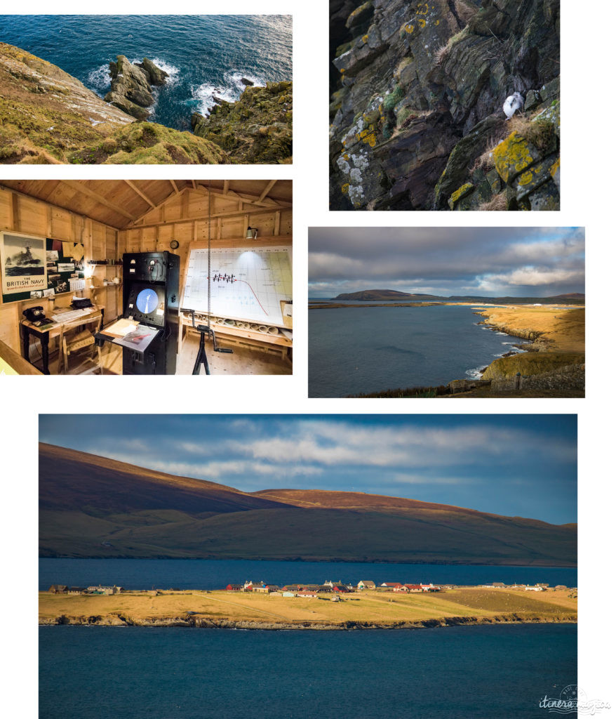 Sumburgh Head Shetland. Blog Shetland